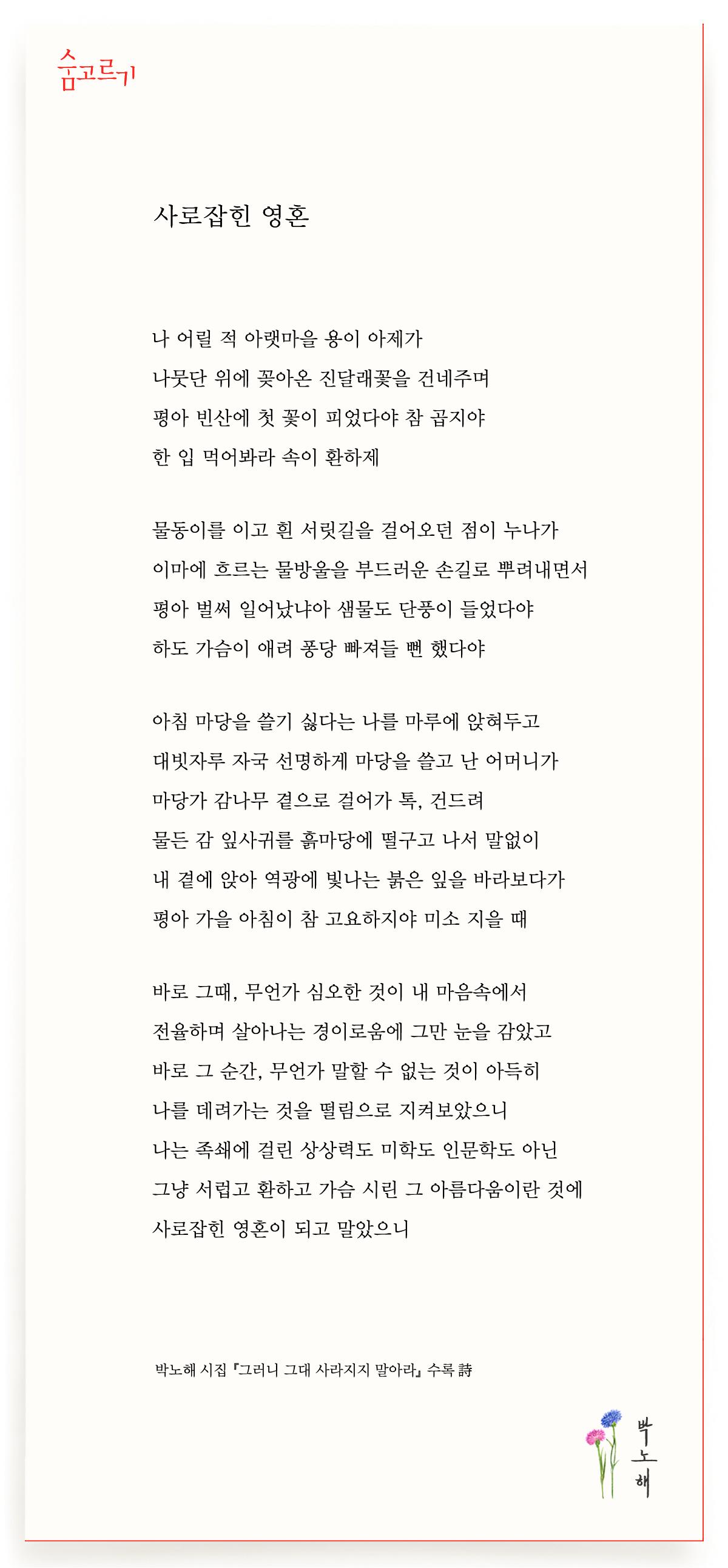 박노해의 숨고르기 사로잡힌 영혼