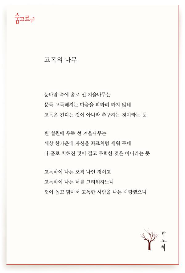 박노해의 숨고르기 고독의 나무
